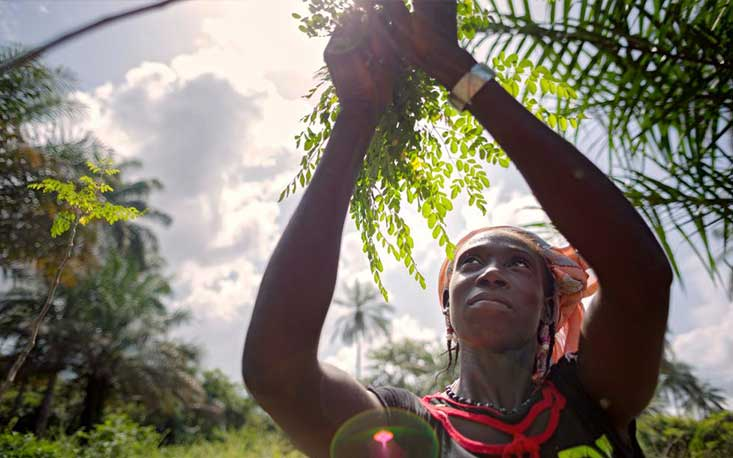 Image: Guinea - Rural Women's Cooperative. UN Women, Flickr.